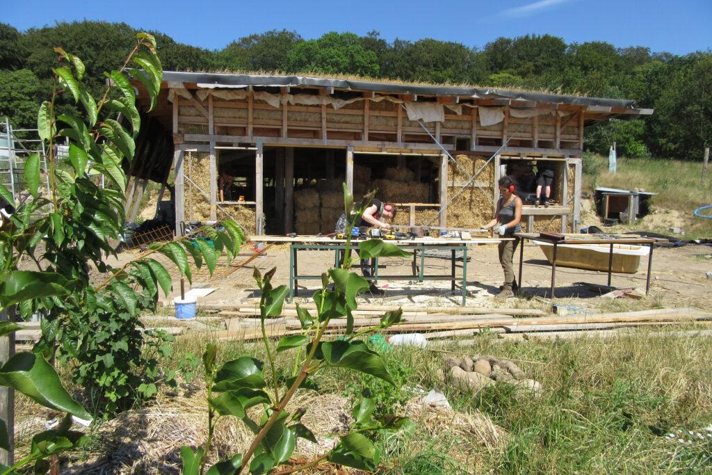 Halmhus bygges midt i permakultur landbruget